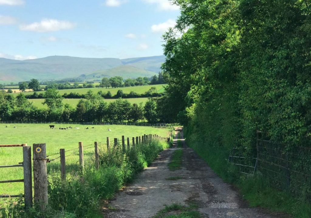 Bridleway to Long Marton and the Masons Arms